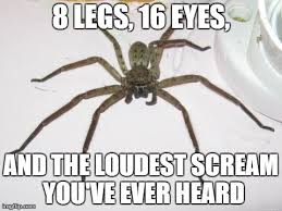 huge spider - Imgflip via Relatably.com