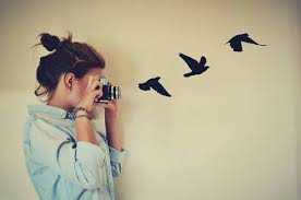 """Résultat de recherche d'images pour """"tumblr camera photography"""""""