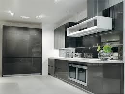 gloss polymer acrylic mdf german kitchen grey  modern kitchen art  grey