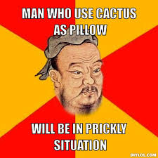 DIYLOL - Man who use cactus as pillow Will be in prickly situation via Relatably.com
