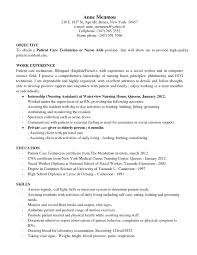 auto insurance s resume good s resume examples good s resume hidden chamber king sample cv references