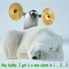 嘿!!老兄!!你的 morning call 來了  !!! 趣圖---趣味圖片照片