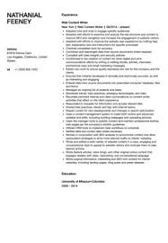 Resume Web Content Writer Resume Sample with London template