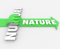 nature vs nurture theories in psychology re enlivened nature vs nurture theories of personality in the  st century