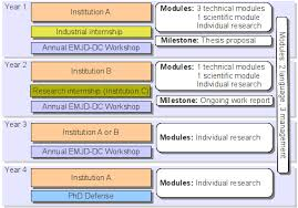 Structure of the EMJD DC studies