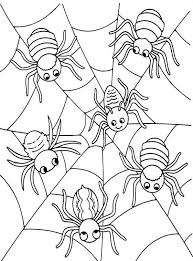 Small Picture Halloween Coloring Pages Spider Animal Coloring Pages Halloween