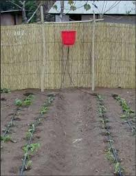 Small Picture 8 best Garden drip systems images on Pinterest Drip irrigation