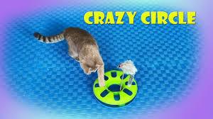 <b>Игрушка</b> для кота <b>TRIXIE</b> CRAZY CIRCLE с мышкой - YouTube