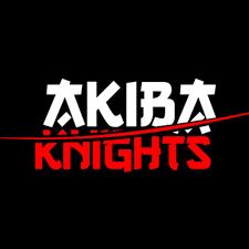 Akiba Knights