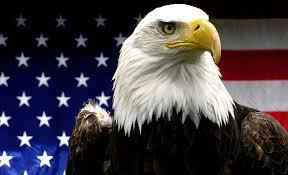 Image result for eagle american symbol
