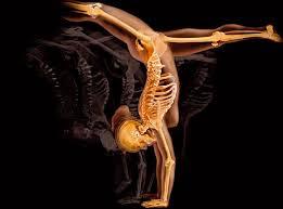 osteopathie sportive gymnastique