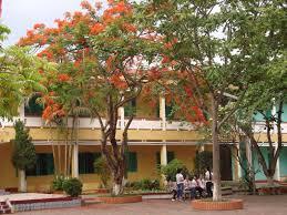 Image result for trường xưa