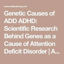 ideas about Attention Deficit Disorder on Pinterest   ADHD