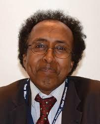 Mohamed Ibrahim - ICANNWiki - MohamedIbrahimPortrait