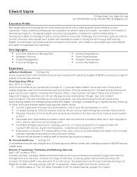 professional healthcare chief operating officer templates to resume templates healthcare chief operating officer