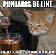 14 Hilarious Memes from Fun-Loving Punjabis - Page 2 of 5 via Relatably.com
