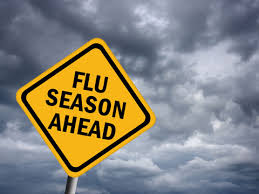 Flu Season 2012/2013