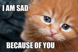 I am sad cat memes | quickmeme via Relatably.com