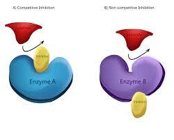 Inibidor enzimático