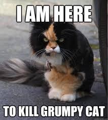 Unhand me Vile Creature - Evil Cat - quickmeme via Relatably.com