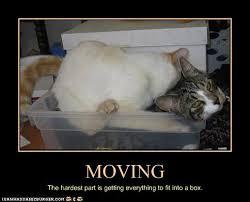 Funny Moving Quotes. QuotesGram via Relatably.com