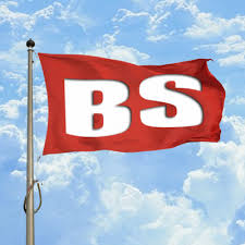 Image result for bs flag