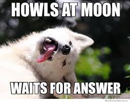 Best Of The Moon Moon Meme | WeKnowMemes via Relatably.com