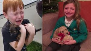 <b>Cute Kids</b> Cry Tears Of Joy for <b>New</b> Puppy Surprise Gift Compilation ...