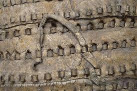 NHM Hallstatt Archeology - Tragsäcke
