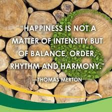 Bildresultat för lycka och harmoni