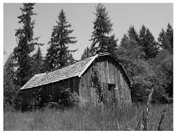 Image result for black and white barn
