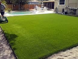grass carpet delta colorado paver patio