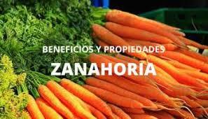 Resultado de imagen para zanahorias