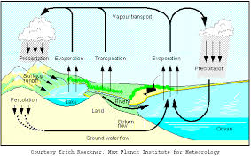 water cycle grabber  water cycle graphic