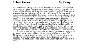 resources the writing book fireman saves kitten writing example lesson ideas