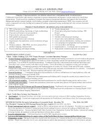 resume information systems cipanewsletter business management information systems resume s