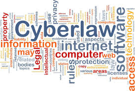 short essay on cyber law words