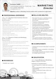 sample resume  sample indesign template resume resume template    example resume template for marketing director   professional experience  example free download resume template microsoft word   experience