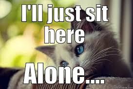 Lonely Cat - quickmeme via Relatably.com