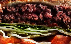 Argument essay vegetarian Killing animals for food