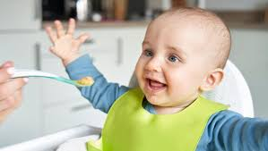 <b>Organic Baby Food</b>: Everything You Need to Know