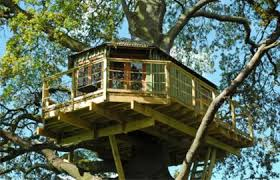 PLAN EDEN  Custom bespoke treehouse design and build for All Ages    Custom treehouse designed and constructed as a recreational space for adults