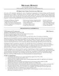 cio  chief information officer  resumefree resume templates