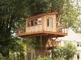 Tree house designs and plans for adults   Design of your house    tree house designs and plans for adults photo