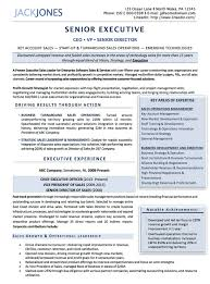 resume examples cv sample resume templates rso resumes 3 ceo vp s executive