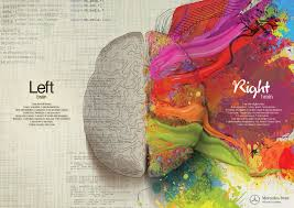 right brain and left brain digram