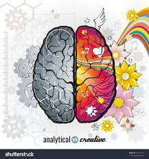 left analytical right creativity brain functions stock vector left analytical and right creativity brain functions vector concept illustrations human intelligence design left