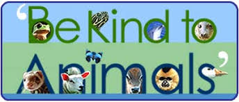 Image result for be kind to animals quotes