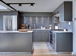 kitchen colour contemporary paint