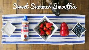 <b>Sweet Summer</b> Smoothie | KONG Company